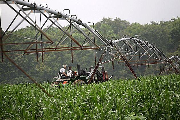 Dodge center minn ap a man has died in a farm accident near