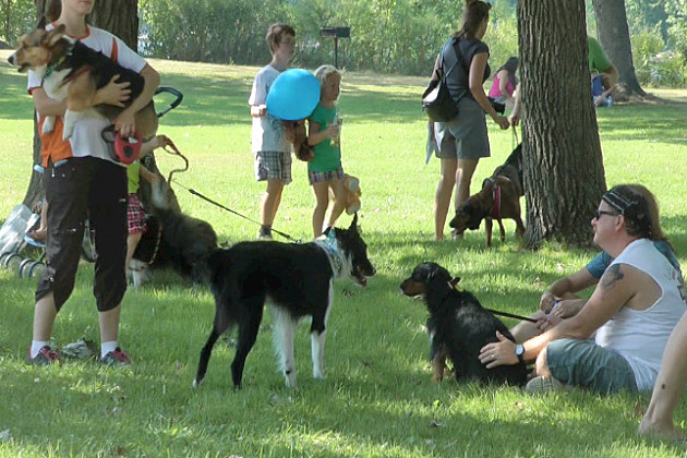 Dogs and owners hang out at the 25th Annual Woofstock Companion Walk