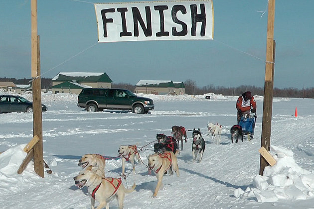 Finish Line at Winter Warrior Sled Dog Race
