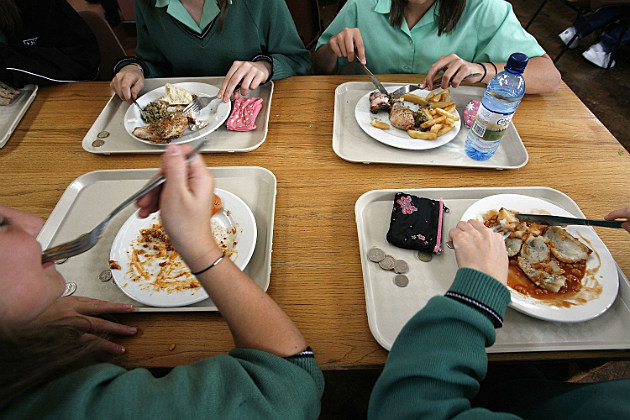 improving the school lunch A planning framework for improving school food, supporting sustainable food systems, and teaching and integrating curriculum around food issues.