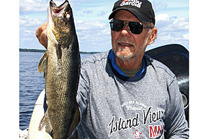 Jerry Carlson  8311: Walleyes of all sizes can be found on Rainy Lake reefs in mid-July.