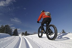 Cyclist riding a fat bike on a nordic ski trail