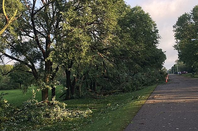 Melrose storm damage, photo courtesy of Ashley Klaphake